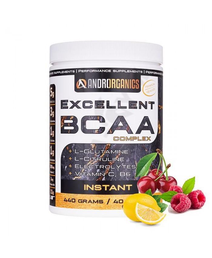 ANDRORGANICS EXCELLENT BCAA COMPLEX 440 g
